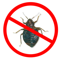 Kill bed bugs naturally with Avenger Organics® Natural Bed Bug Killer.