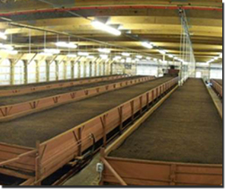 Worm Power Vermicompost Facility
