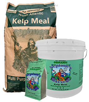 Kelp Meal Organic Fertilizer 1-0-2 Neptune's Harvest