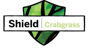 Brabgrass Shield