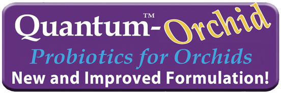 Quantum Growth Orchid Logo